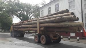 1Zwaar houttransport langs Presidentieel paleis1