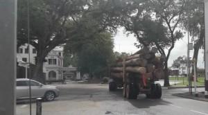 1Zwaar houttransport langs Presidentieel paleis2